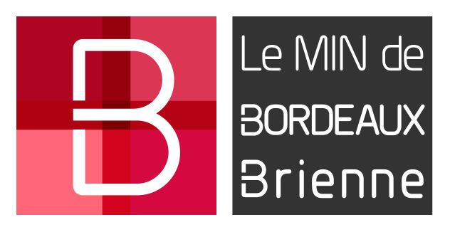 MIN de Bordeaux Brienne